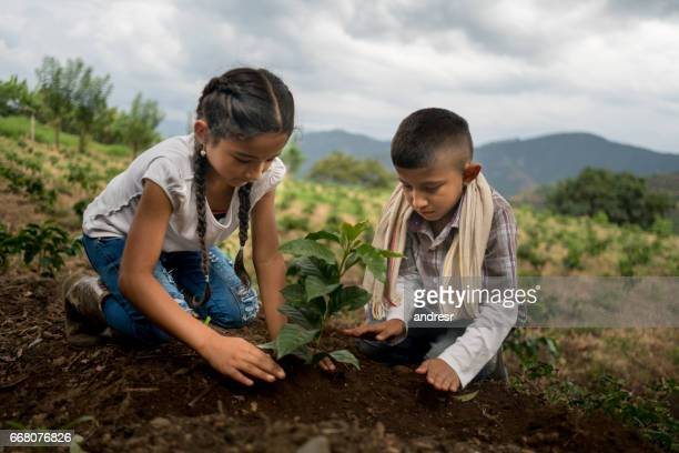 Happy children planting a tree at the farm