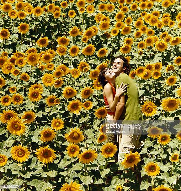 Happy Couple Embracing in a Field of Sunflowers