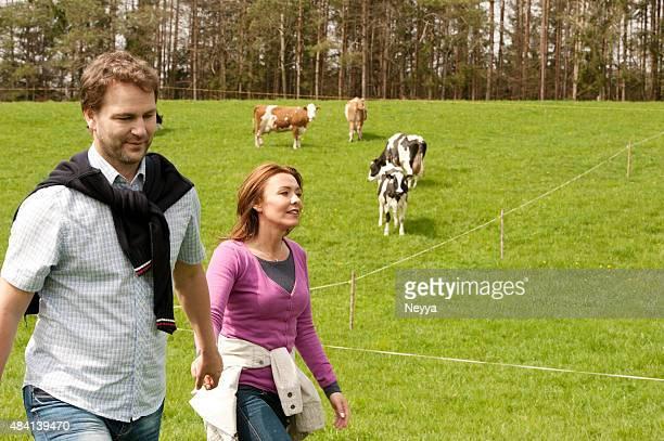 Glückliches Paar auf einer Wiese nahe Viehweide