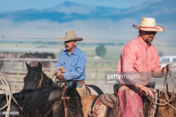Happy cowboys on their horses