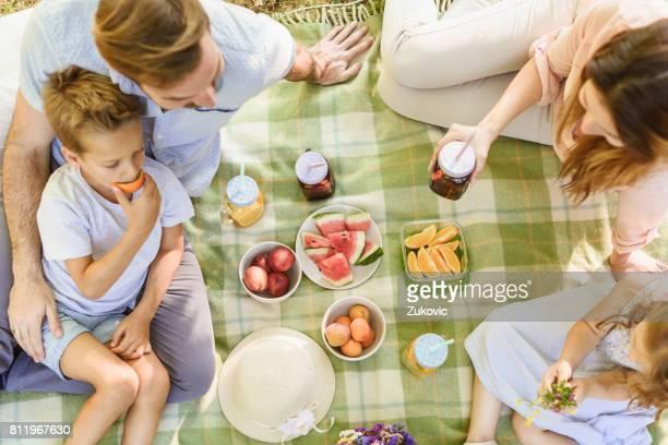 Happy Family Enjoying Picnic