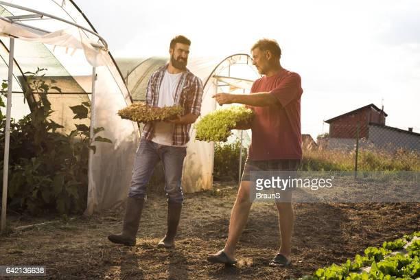 Happy farm workers walking on a field and talking.