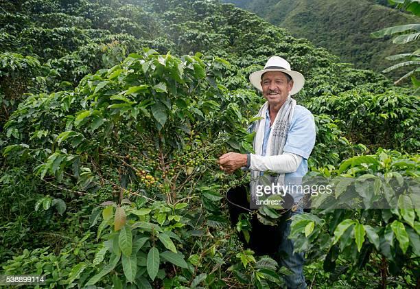 Happy farmer harvesting Colombian coffee