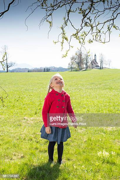 Happy girl with braided hair in the meadow