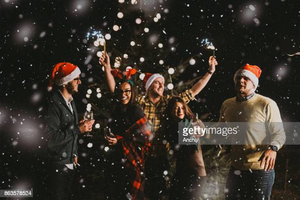Happy group of friends with alcohol in their hands celebrating New Year's Eve in the mountain outdoors in front of decorated tree. Winter concept