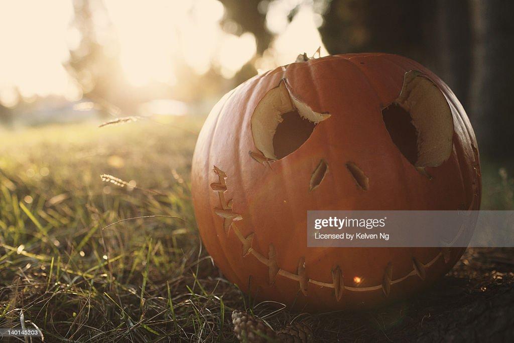 Happy Halloween in field