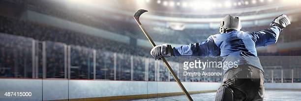Happy ice hockey player
