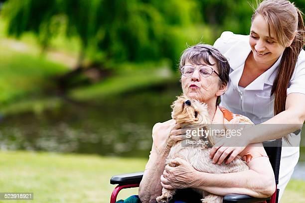 Happy interaction between nurse, patient, and pet dog in park