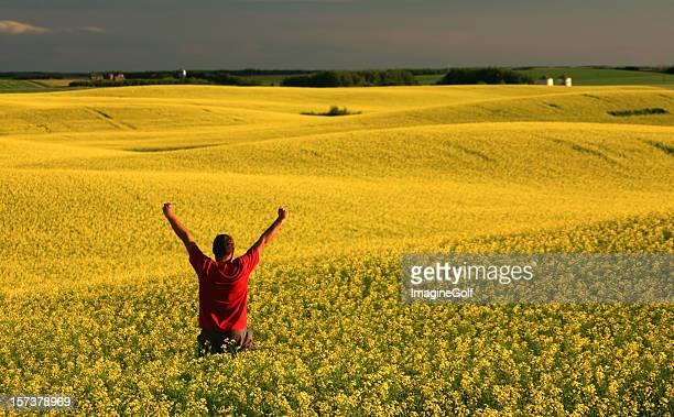 Heureux homme dans le champ de colza