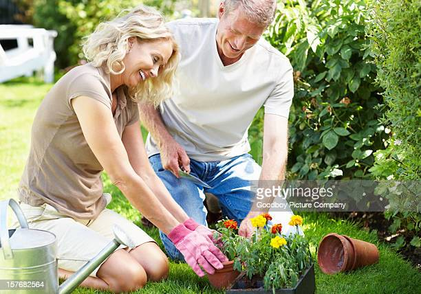 Happy mature couple working together in their garden