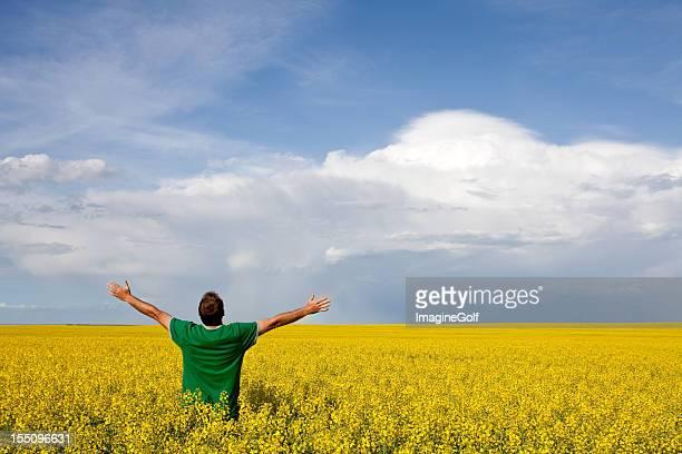 Glücklicher Mann in Canola Field