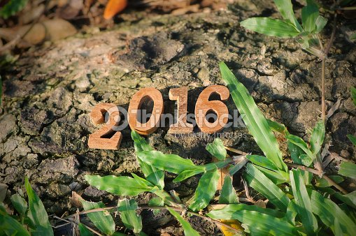 happy new year 2016 nature concept and wood number idea stock photo