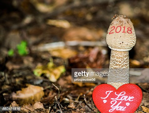 Happy New Year 2018 image. 2018 is growing up and bringing love. A conceptual abstract background photo of time, change, love, and healthy lifestyle concepts. : Stock Photo