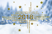 Happy New Year in different languages greeting card concept with snowy winter landscape in blured background