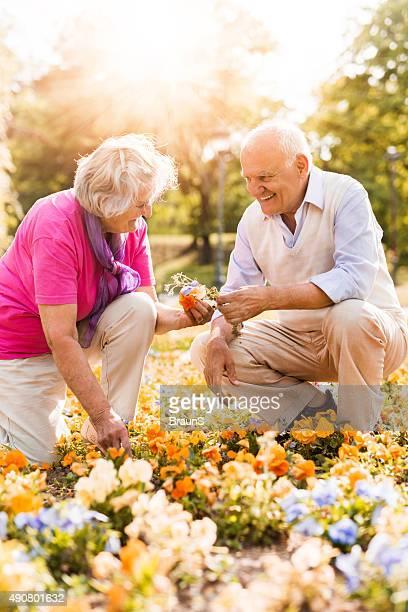Glücklich altes Paar arbeiten gemeinsam in einem Garten.