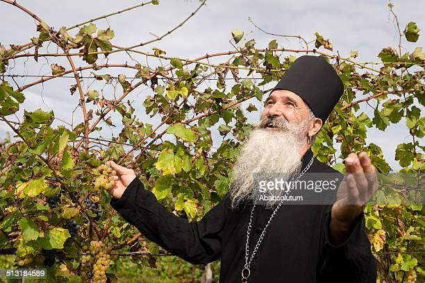 Happy Senior Ortodox Priester Hand pflücken Trauben, Europa