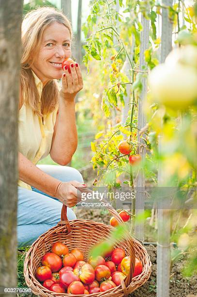 Happy Senior Woman Checking the Growth of her Organic Tomatoes