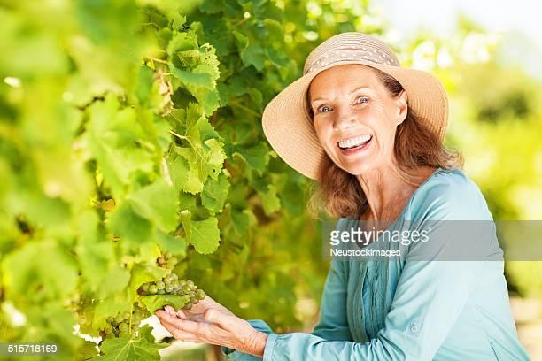 Glückliche Senior Frau Winzer Trauben prüfen In Vineyard