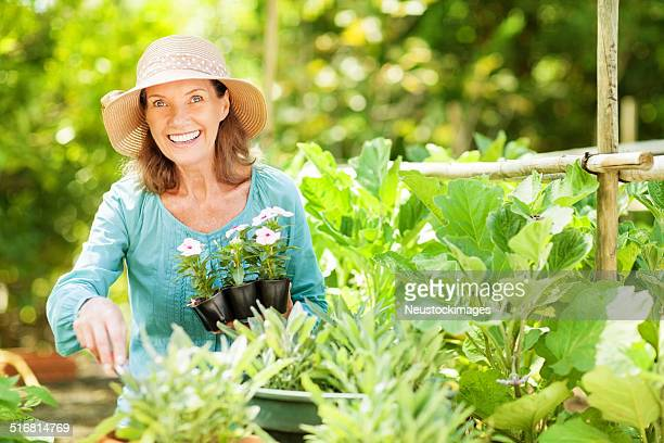 Happy Senior Woman With Flower Plants Gardening In Garden