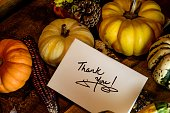 Vintage Happy Thanksgiving greeting card with handwritten thank you, photography and social share image for wishing clients and business Thank You on pumpkins, gourd, Indian corn, acorn and squash on