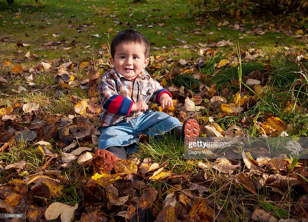 Happy toddler in autumn leaves : Stock Photo