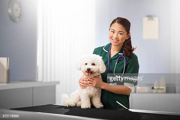 Heureux vétérinaire et chien