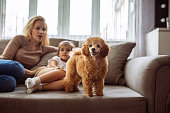 Shot of a mother and daughter sitting on a sofa with a cute puppy