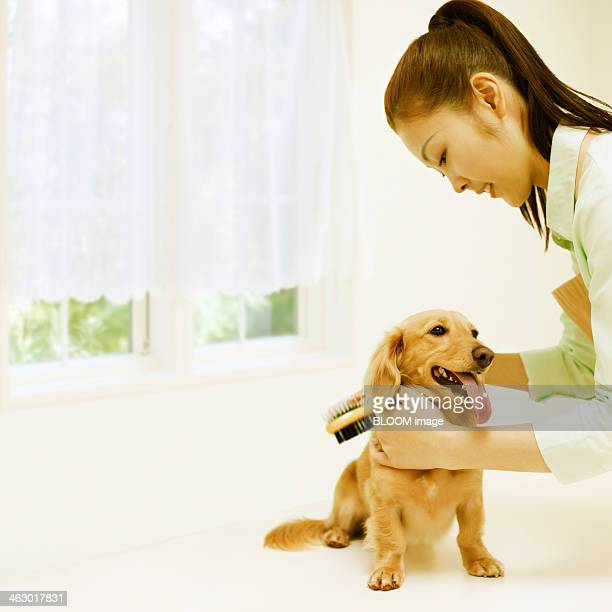 Happy Woman Grooming Dog