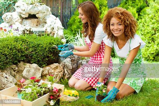 Hy Women Gardening Outdoors Stock Photo