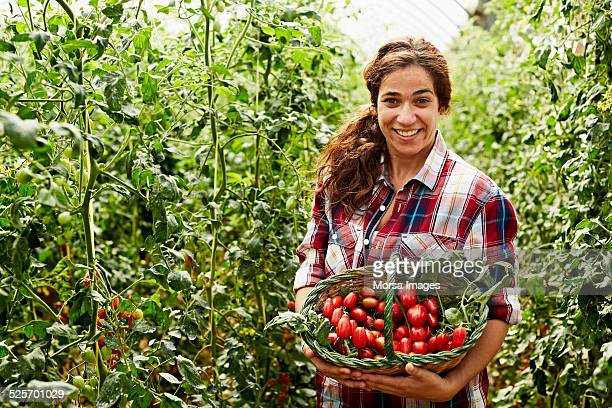Happy worker holding tomato basket at organic farm