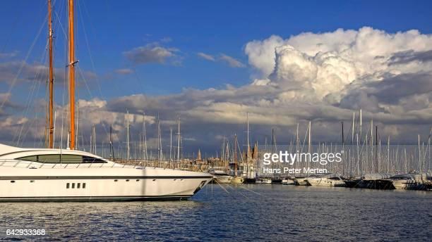 Harbour of Palma de Mallorca with Cathedral La Seu, Majorca, Balearic Islands, Spain