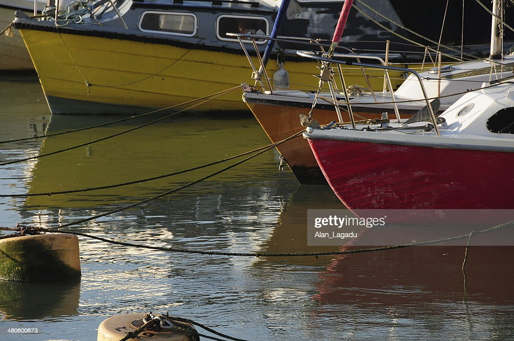 Harbour yachts, Jersey, U.K. : Stock Photo