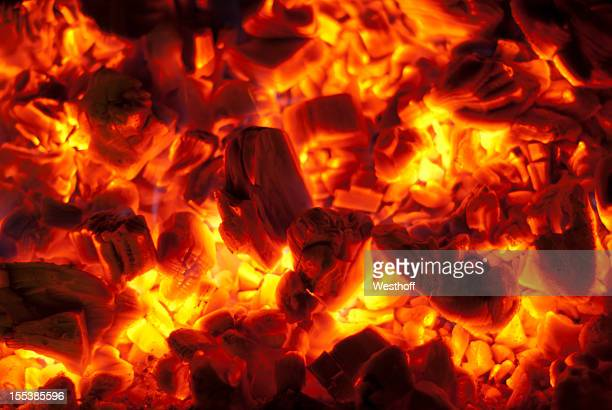 Hardwood Coals