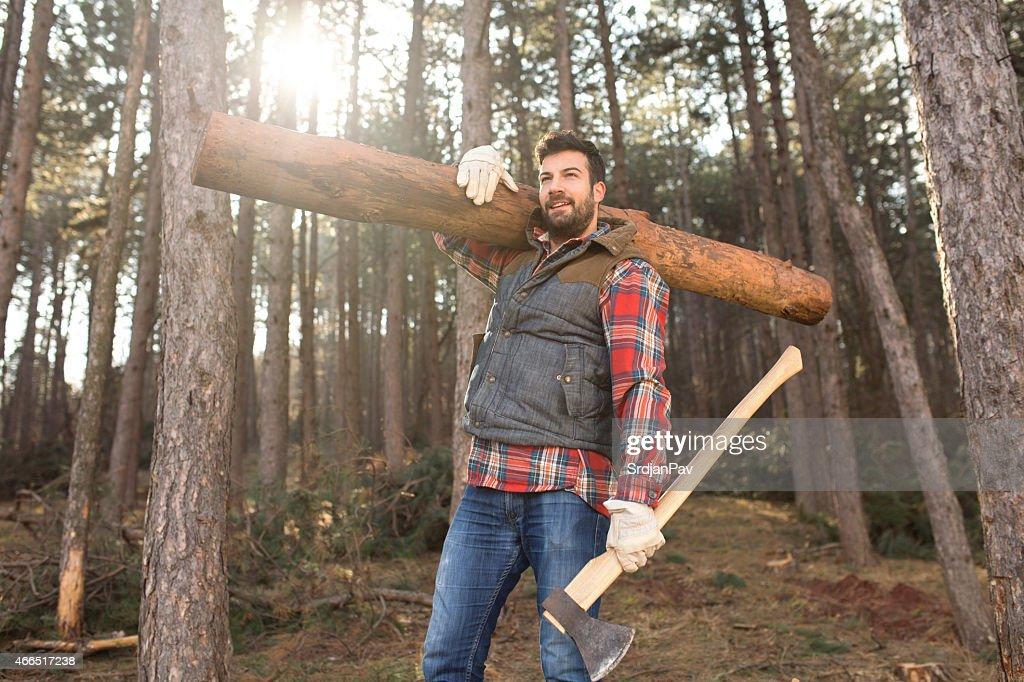 Hardworking Lumberjack : Stock Photo
