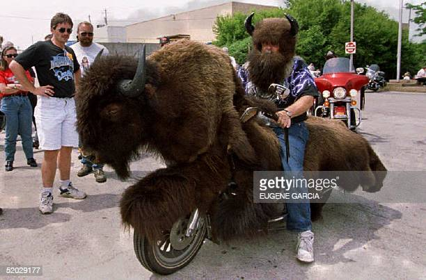 Harley Davidson motorcycle rider Ron Stratman of South Dakota rides his bike while dressed as a buffalo 11 June 1993 at a 90th anniversary rally for...