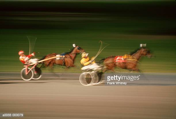 Harness Race