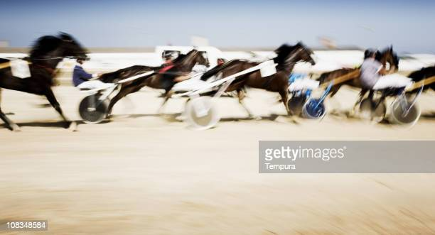 Harness racing in motion blur