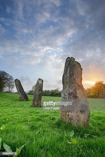 Harold's Stones in the village of Trellech