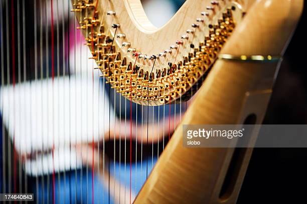 Harp In Orchestra