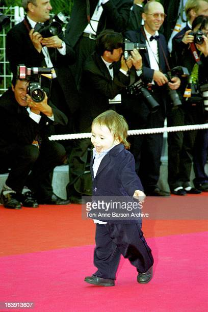 Harper Daniel Voll during 53rd Cannes Film Festival A Conversation With Gregory Peck at Palais des Festivals in Cannes France