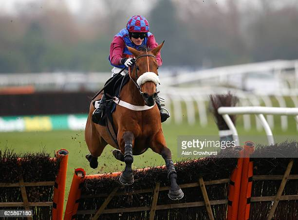 Harry Bannister riding La Bague Au Roi clear the last to win The Thoroughbred Breeders' Association Mares' Novices' Hurdle Race at Newbury Racecourse...