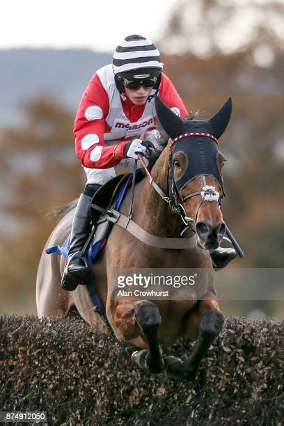 Harry Cobden riding Ridgeway Flyer clear the last to win The Setsquare Recruitment Novicesâ Steeple Chase at Taunton racecourse on November 16 2017...