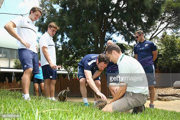 Harry Glover and Ethan Waddleton of England and Scott Riddell and Mark Robinson of Scotland watch on as keeper Simon Brown speaks to them about...