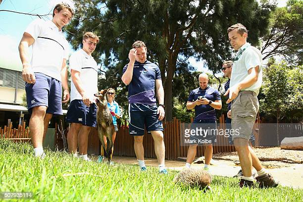 Harry Glover and Ethan Waddleton of England Scott Riddell Nick Lumley and Mark Robinson of Scotland watch on as keeper Simon Brown speaks to them...