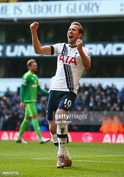 Harry Kane of Tottenham Hotspur celebrates scoring his team's fourth goal during the Barclays Premier League match between Tottenham Hotspur and...