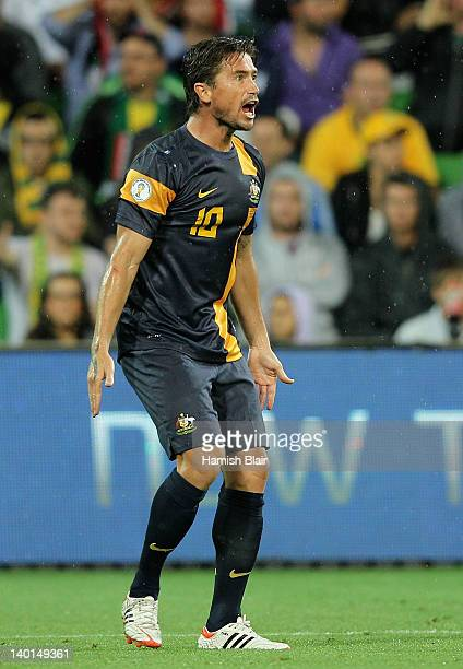 Harry Kewell of Australia argues with the referee during the Group D 2014 FIFA World Cup Asian Qualifier match between Australia and Saudi Arabia at...