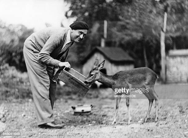 Harry Liedtke *12101882 Actor Germany feeding a young deer in the garden of his summer cottage at the Scharmützelsee lake near Berlin 1930...