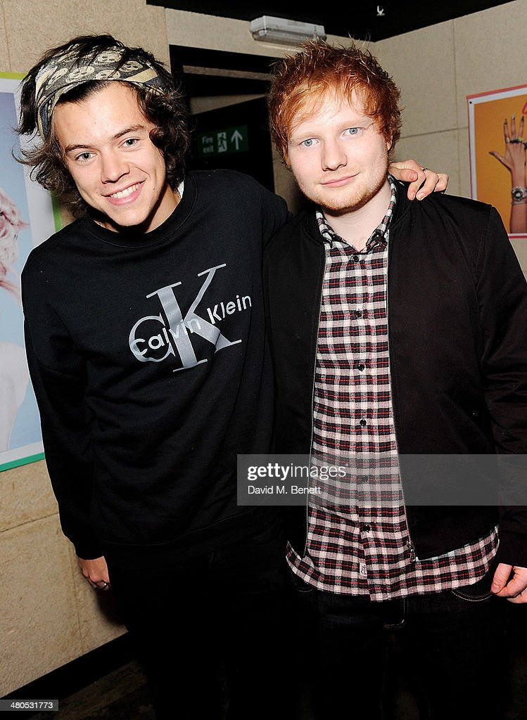 Harry Styles and Ed Sheeran attend the Fudge Urban Lou Teasdale Book Launch party on March 25, 2014 in London, United Kingdom.