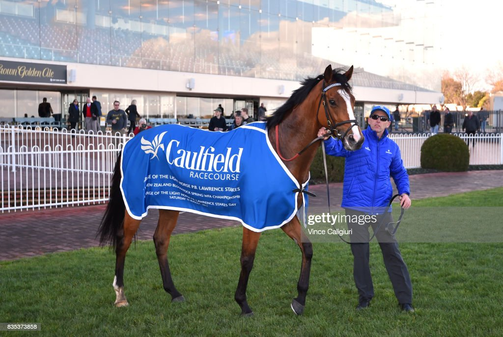 Hartnell after winning Race 7, P.B. Lawrence Stakes during Melbourne Racing at Caulfield Racecourse on August 19, 2017 in Melbourne, Australia.