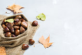 Autumn fall harvest concept. Ripe raw chestnuts in a canvas bag on a cozy kitchen table. Copy space background